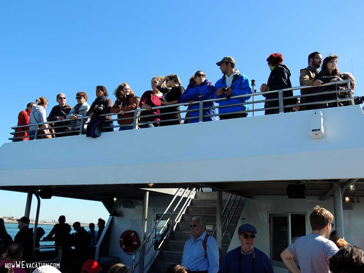whale watch boat ride