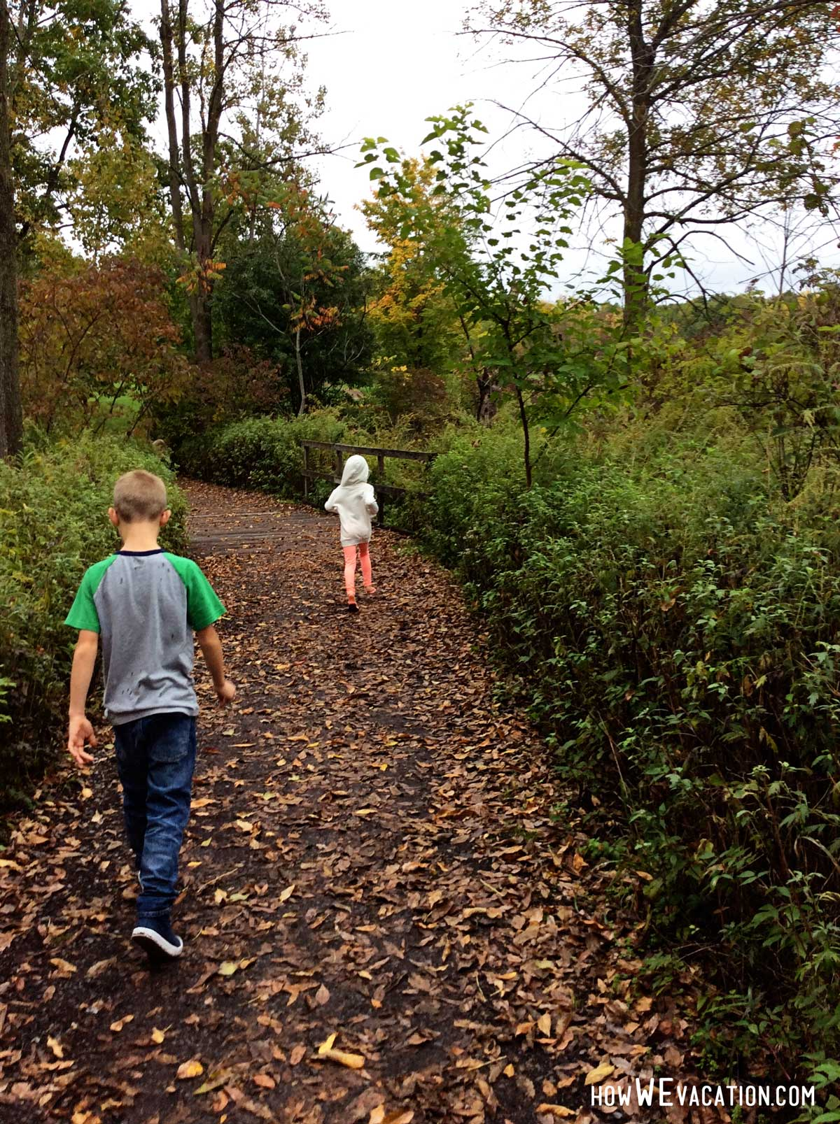 Walking through the Sacred Grove