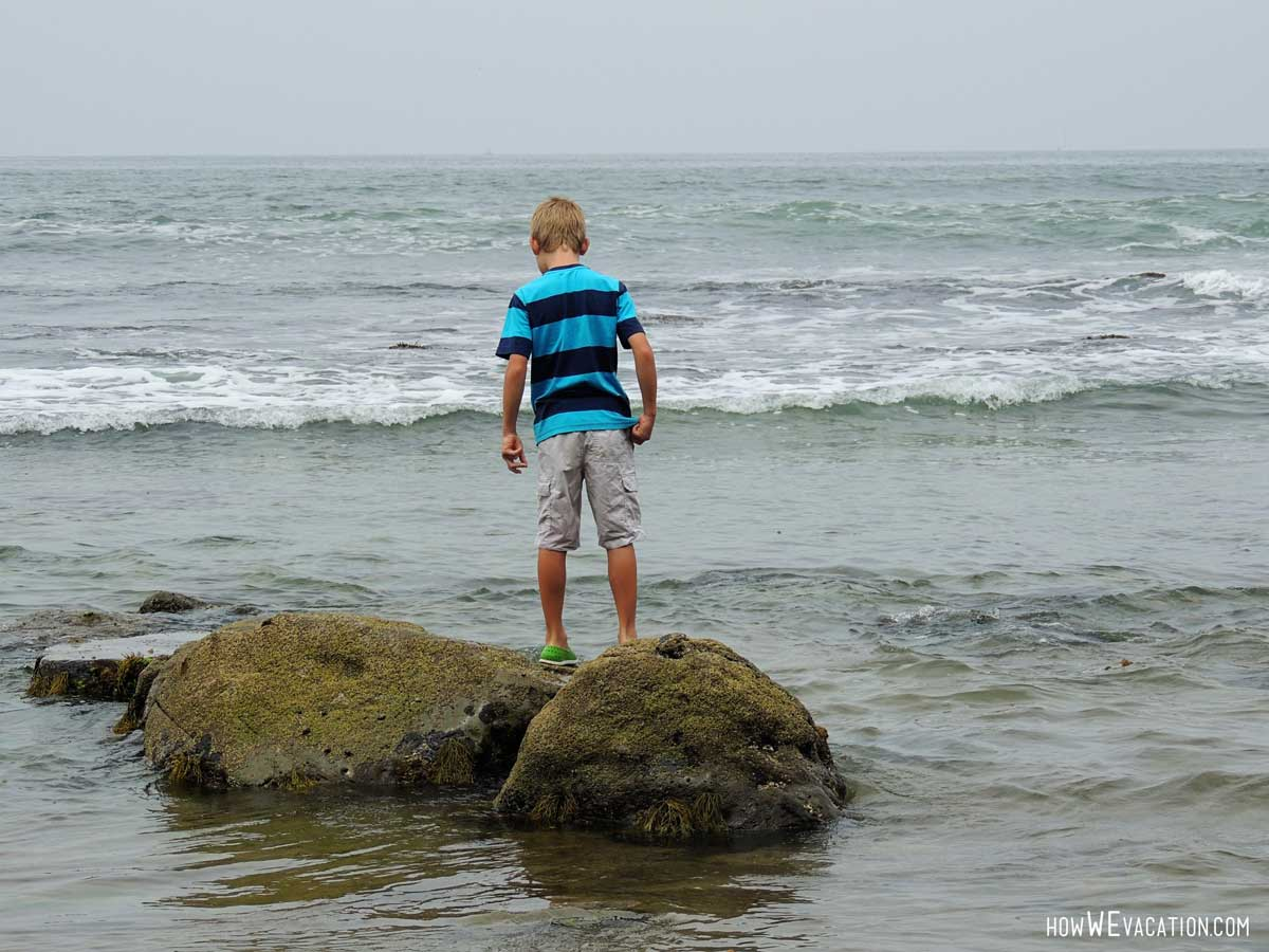 cabrillo tide pools