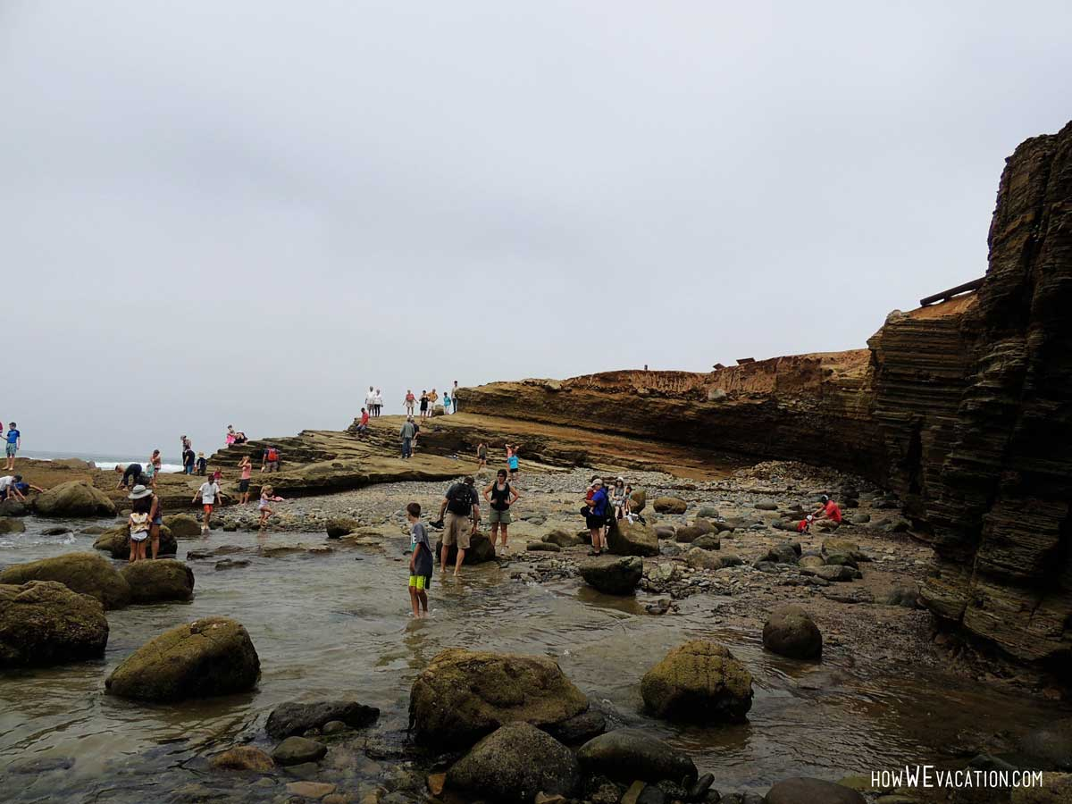 cabrillo tide pools