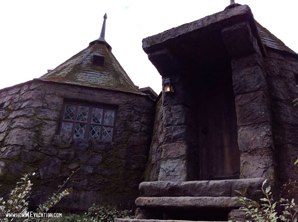 waiting in line for the hippogriff